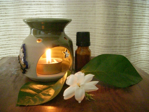 Herbal Bear Introduction To Aromatherapy The Basics Of Essential Oil Blending Thursday